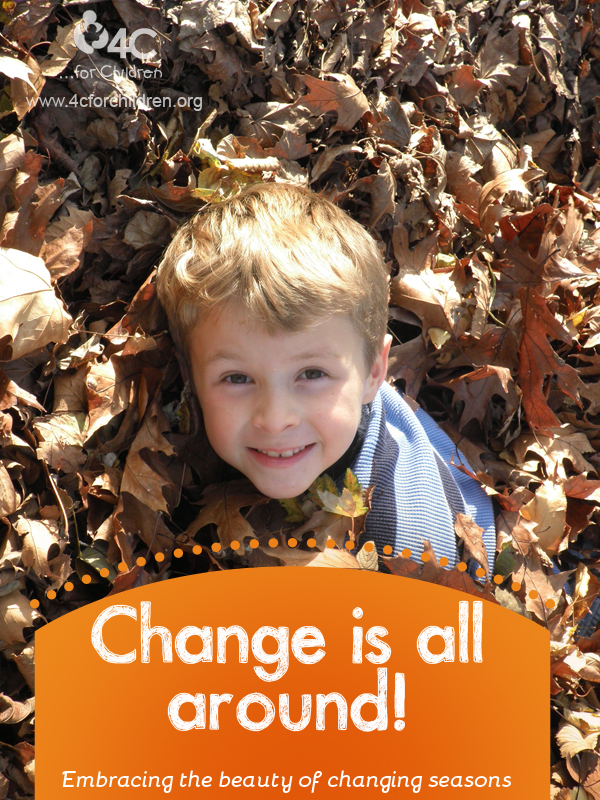 Embracing change in your ECE program