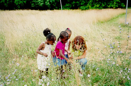 There are lots of opportunities for learning through play outdoors in the summer!